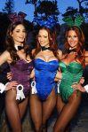 Playboy_Bunnies_2011[1]
