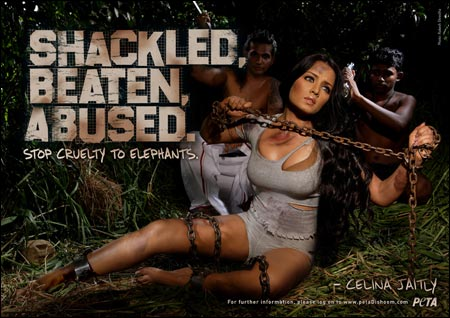 PETA: cruelty to women vs animals