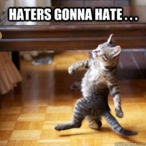 Catitude: Haters gonna hate... and so what?