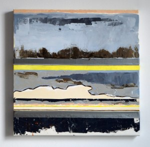 Changing Landscapes, By Hillary Leach Mixed media painting, 2014-15